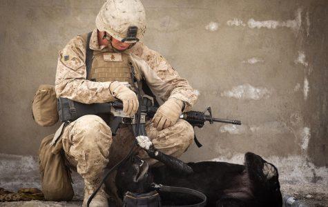 Women in Combat is a Necessity