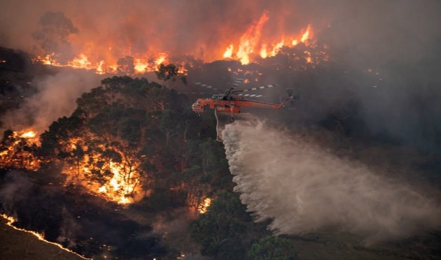 Over 200 Bushfires Swarm the Country of Australia